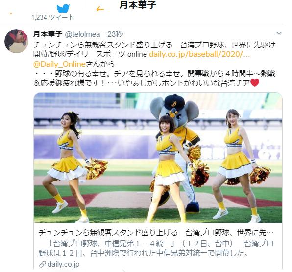 チア 野球 台湾 プロ