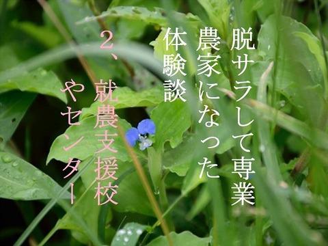 13db9ee1.jpg