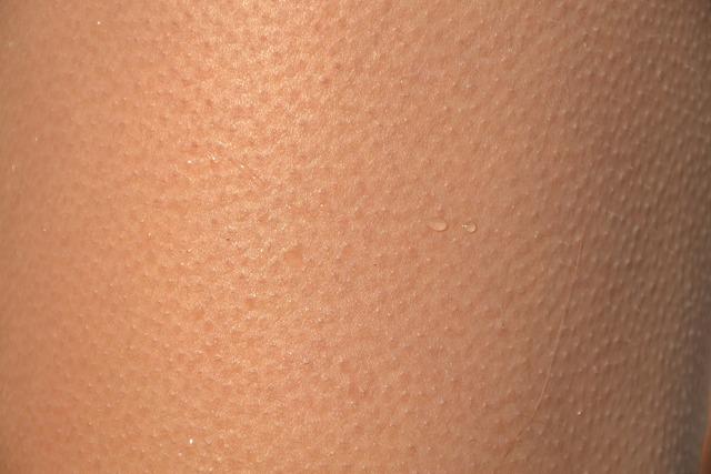 skin-418266_1920