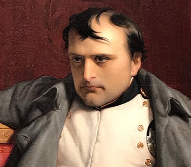 ナポレオン 禿