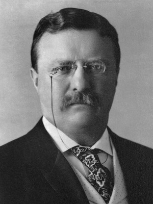 800px-25_Theodore_Roosevelt_3x4