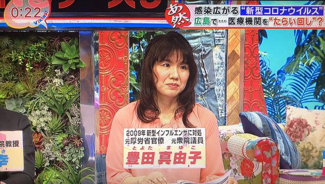 豊田真由子 TV出演