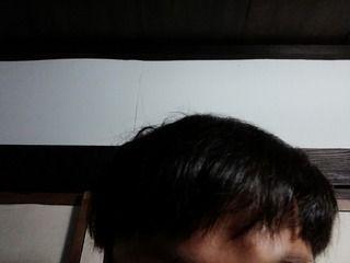 玉ねぎで育毛を継続中。赤玉ねぎの方が髪の毛が生えるのか?