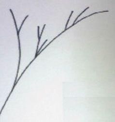 枝毛の原因と枝毛をなくす方法
