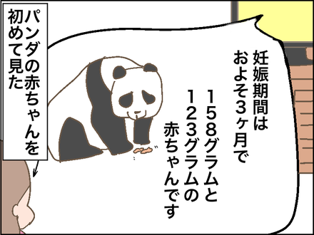 0928パンダ3