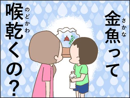 20180911金魚4