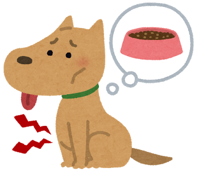 pet_dog_hungry