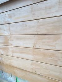 板壁塗装前IMG_3985
