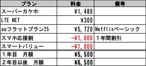 25GB-1