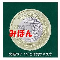 s-記念貨幣