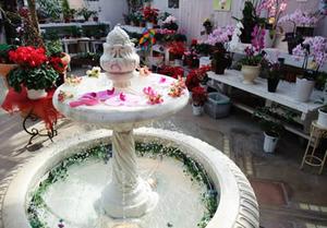 バラの温室