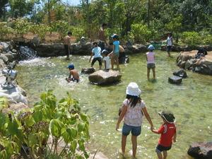 トラウトの池