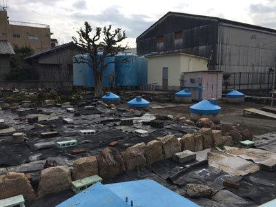 日本盛 宮水井戸