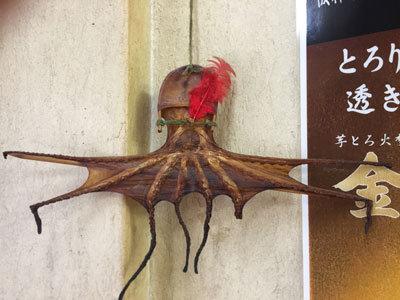 明石ダコ 赤い羽根募金