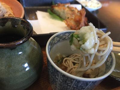 姫路 ヤマサ蒲鉾 蕎麦乃麦 大根おろ蕎麦し