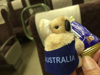 オーストラリア土産 コアラ