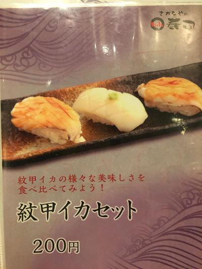 大阪 さかなやのmaru寿司 紋甲イカ