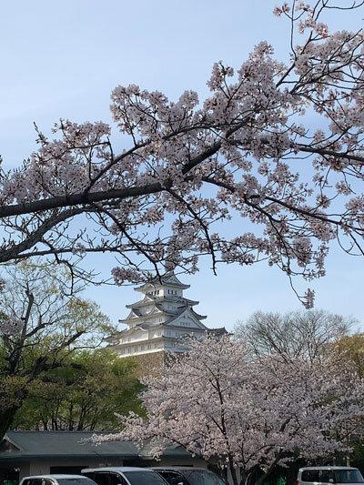 姫路城 お花見 2021