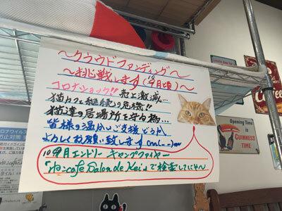 姫路 野里 猫Cafe サロンドケイ クラウドファンディング