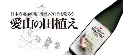 播磨日本酒プロジェクト 愛山の田植え