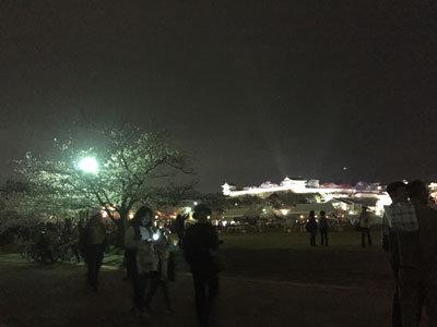 姫路 お花見 2017 夜桜会