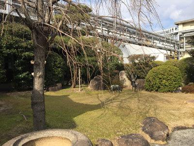 西宮 白鹿 工場内庭園