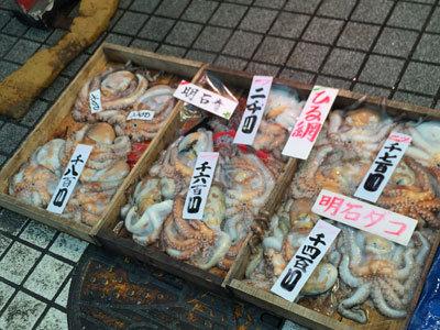 明石 魚の棚商店街 タコ