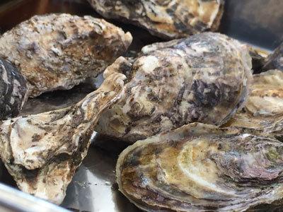 姫路 とれとれ市場 牡蠣