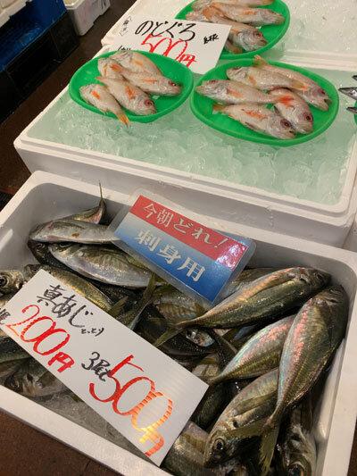 鳥取県 蟹パーク 赤いか