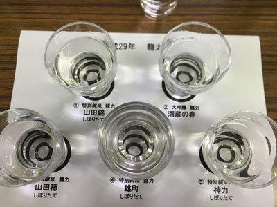 姫路 日本酒 龍力 蔵見学