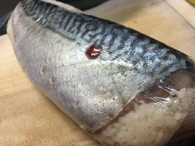 まぁころ 鯖寿司 挑戦