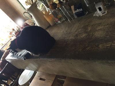 姫路 Cafe&Bar BUENA VISTA ひじき店長