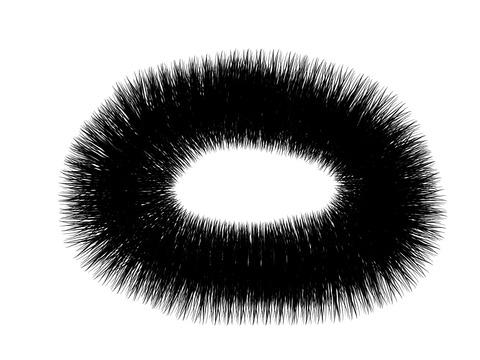 毛ブラシ03