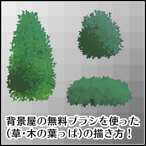 草・木の葉っぱの描き方01