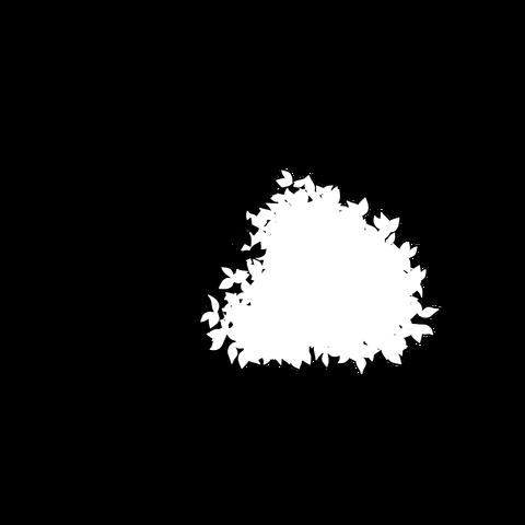 草の塊(葉が丸め)001
