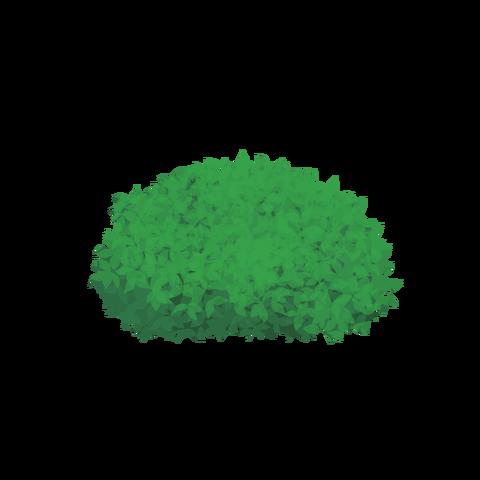 草の塊カラー(葉が丸め)001