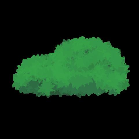 草の塊カラー(葉がトゲトゲ)002