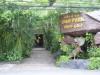 110216恐竜博物館2