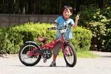 自転車 練習