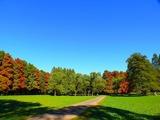 公園,秋ヶ瀬