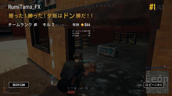 PUBG ドン勝