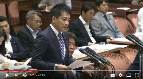 18日国会 辰巳孝太郎議員の質問