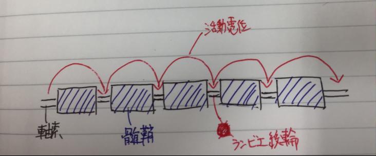 橋本の生理学①〜脱髄疾患〜