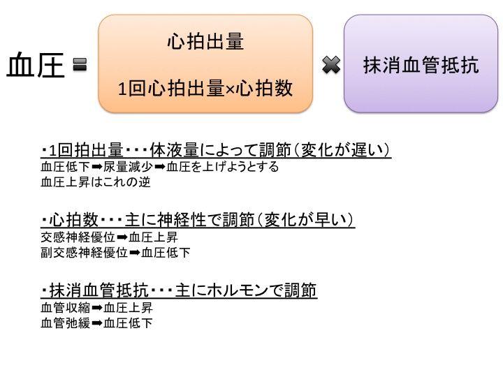 橋本の生理学④ 〜心拍数の調整〜