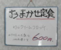 P4198523