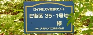 P7170182