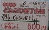 P6260019