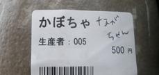 PB080995