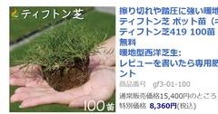 lawn419