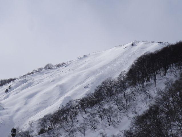 Hakuba Goryu avalanche area